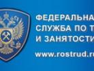 banner_rostrud