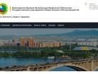 Сайт Красноярск